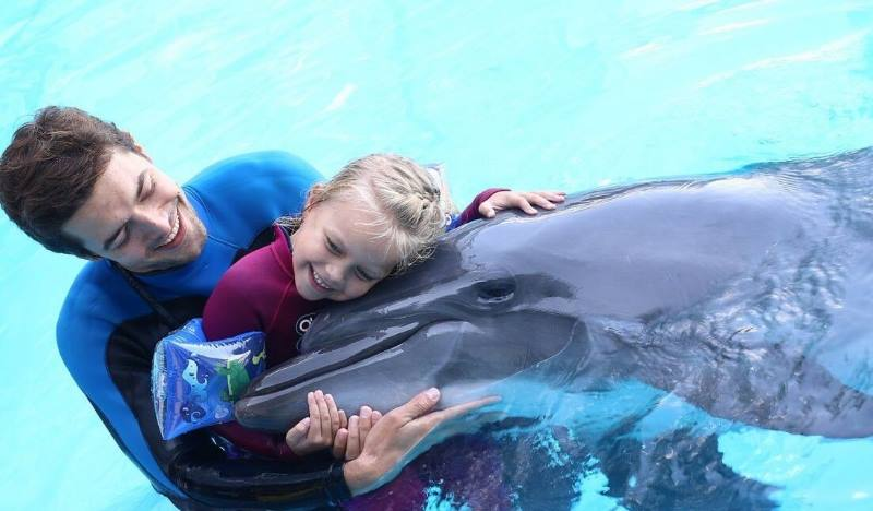 место, где можно вживую увидеть выступления дельфинов