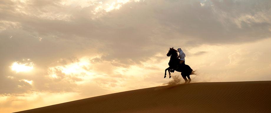 араб на коне в пустыне в дубае